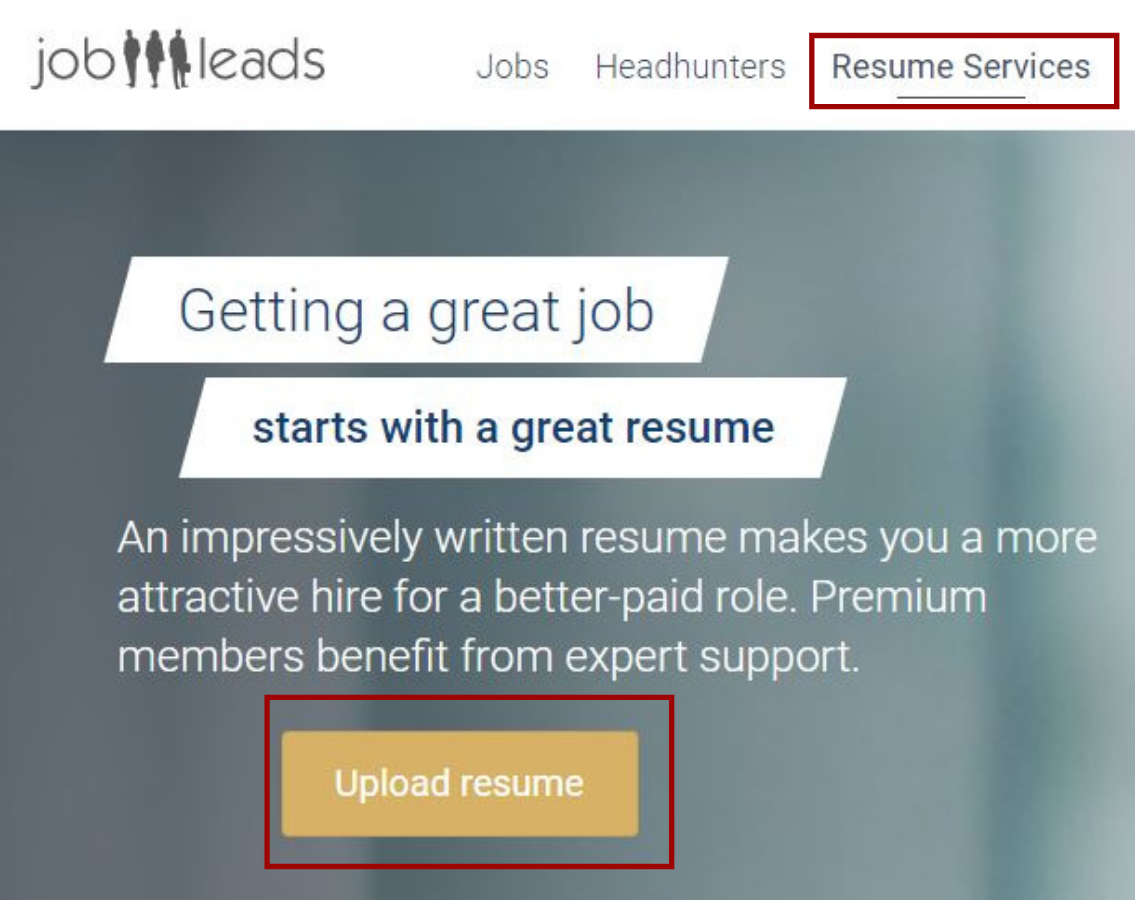 JobLeads_Resume_Review.png